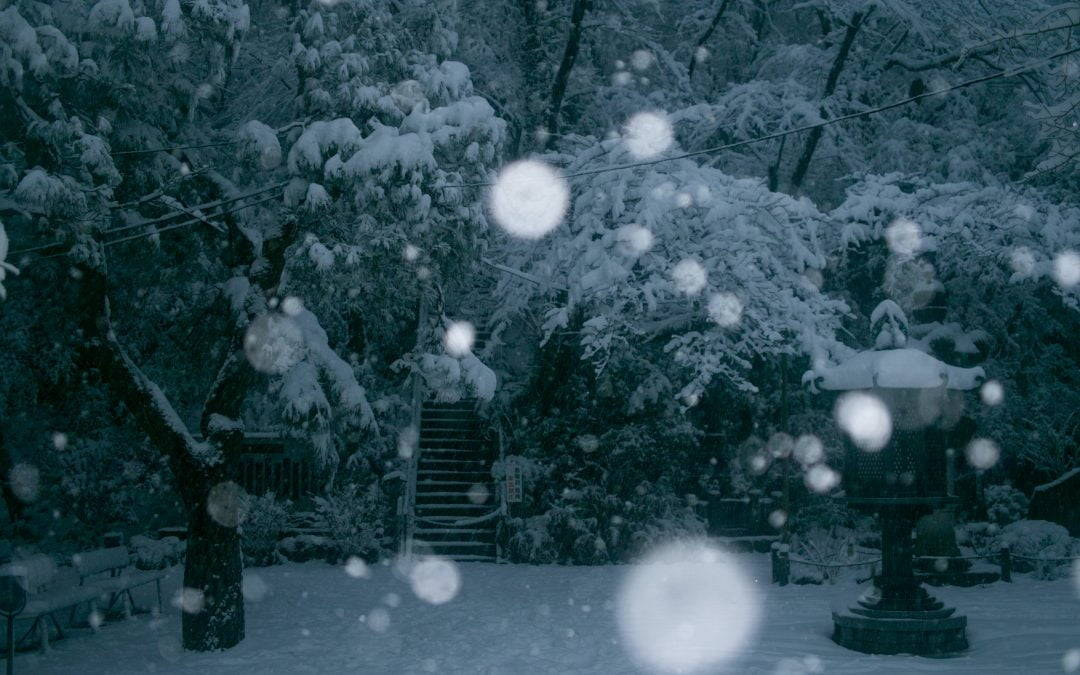 Winter Fury